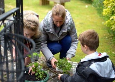 Planting preparation at The Westway